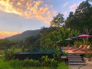 Fern Resort Fern Resort