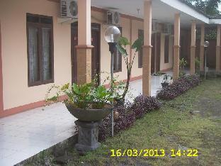 Hotel Patra
