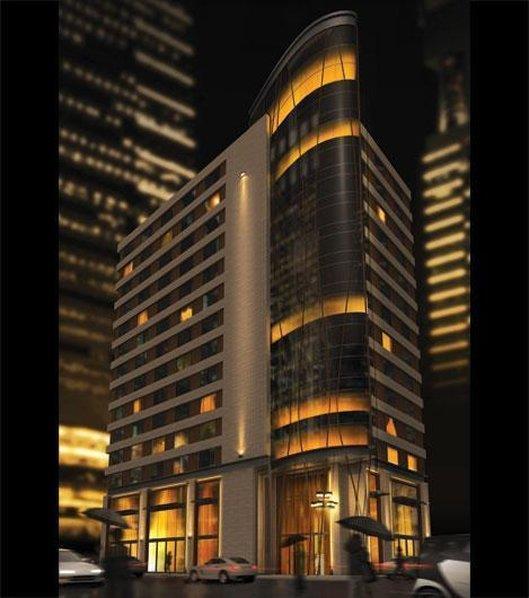 Le St Martin Hotel Centre ville  Hotel Particulier