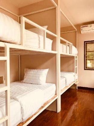 Insight Hostel Insight Hostel
