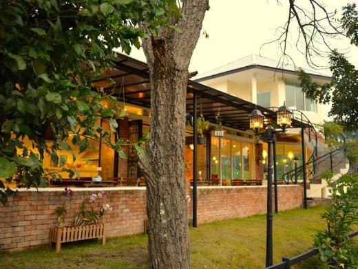 Dandelion Resort