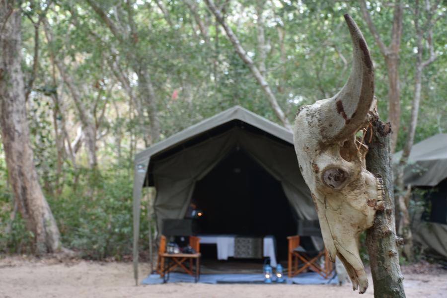 Mahoora Tented Safari Camp   Kumana