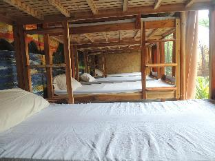 picture 2 of Swinging Carabao Hostel
