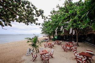 %name Bandon Beach Bar & Hostel เกาะสมุย
