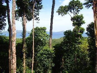 picture 4 of Atremaru Jungle Retreat