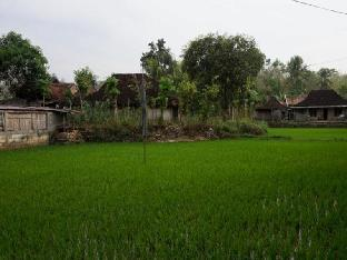 Orlinds Sawah View Guest House