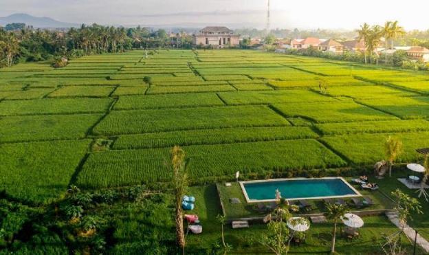 Adil Villa and Resort