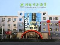 GreenTree Inn Wu'an City Plaza
