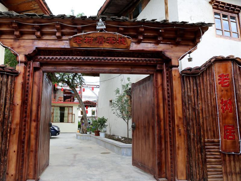 Shangri La Aged Tree Hotel