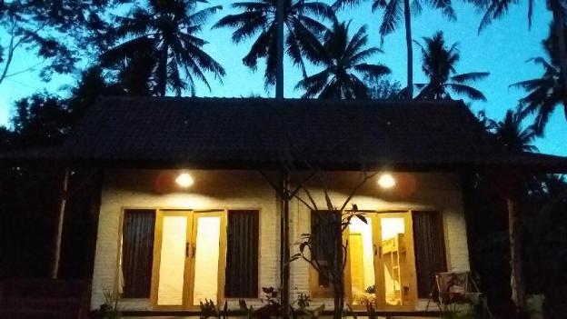 Jungle Surf House  - Budget Twin room