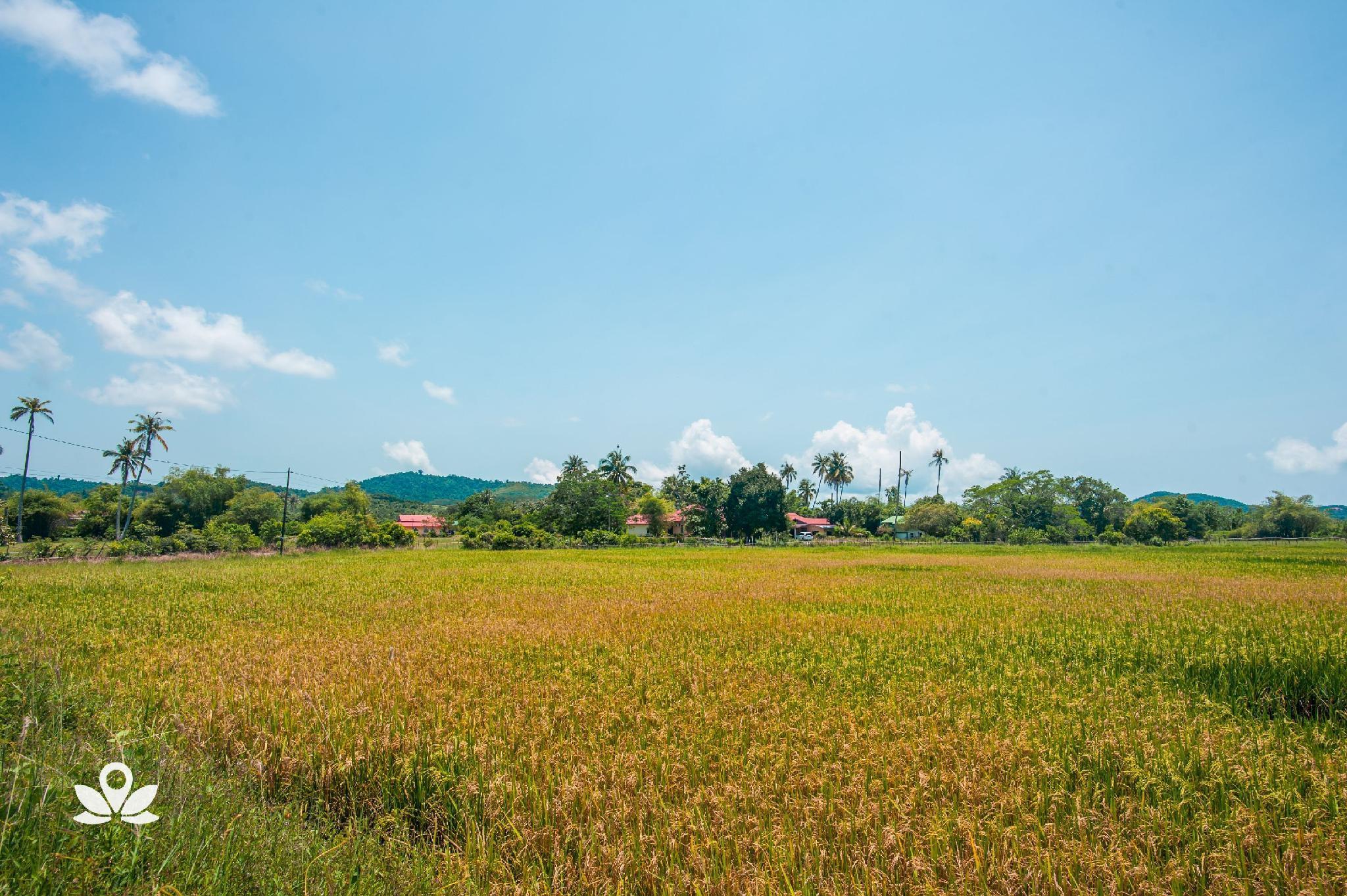 ZEN Home Villa Tepi Bendang