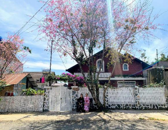 Cỏ Hồng Villa Dalat