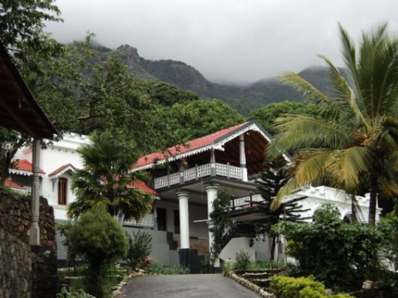 Mount Field Resort