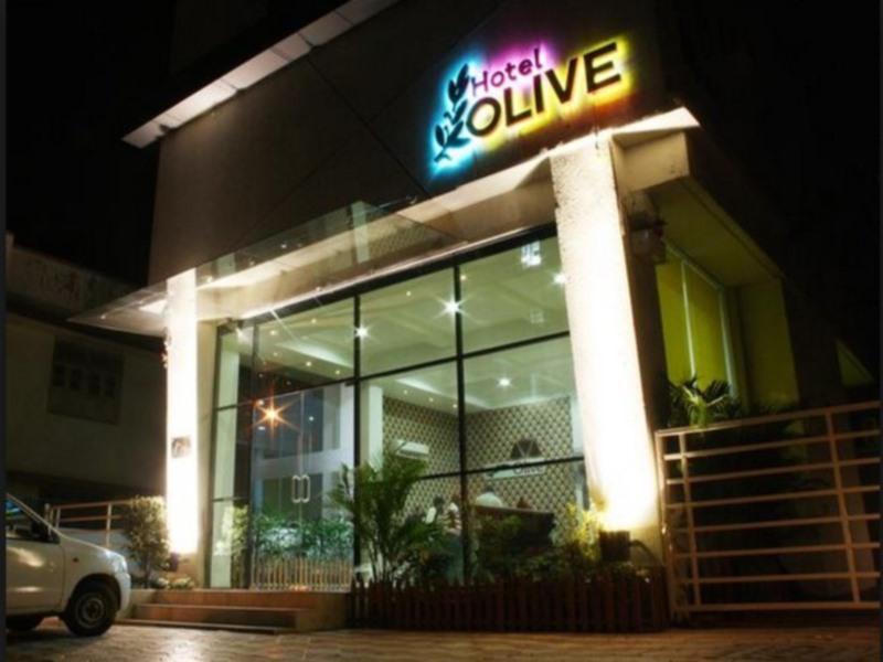 Treebo Olive