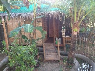 picture 5 of Treasure Isle Guest House