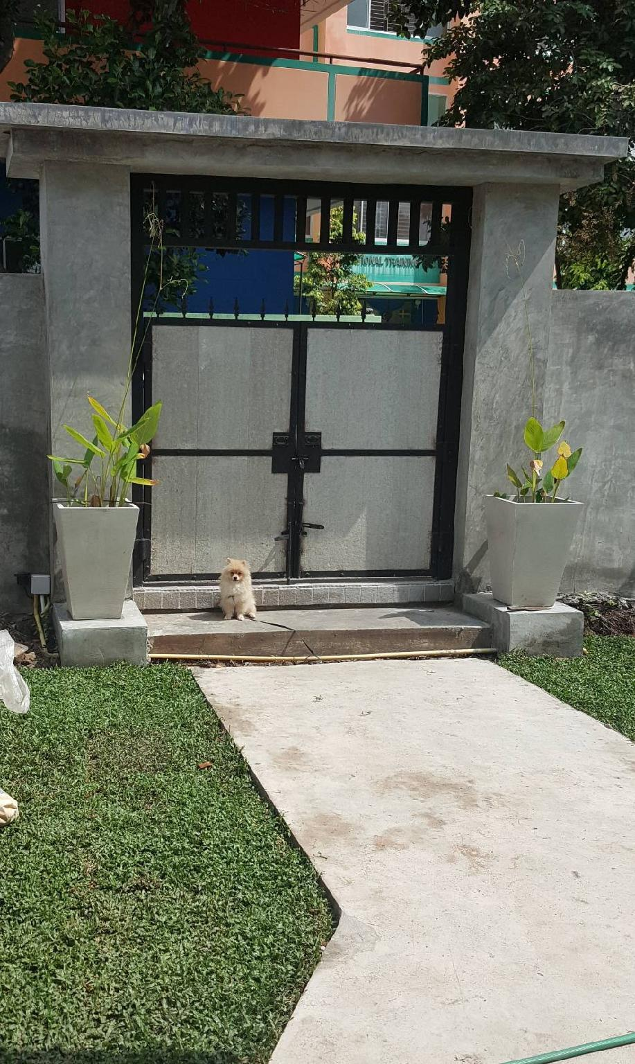 Baan Pak Klang Nern Hostel