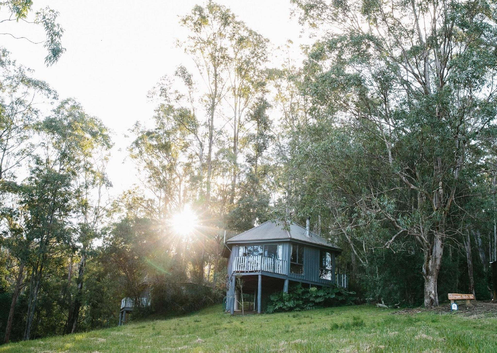 Bluegums Cabins At Barrington Tops