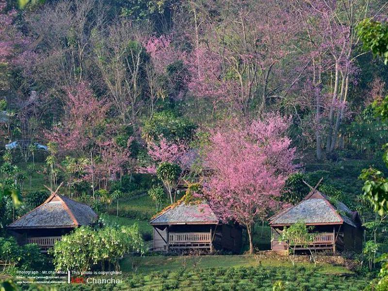 Khumnaiphol Resort