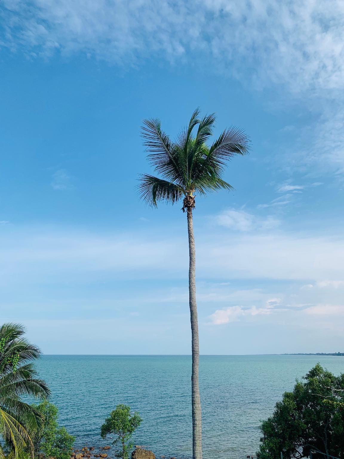 Rock Hill Beach Resort