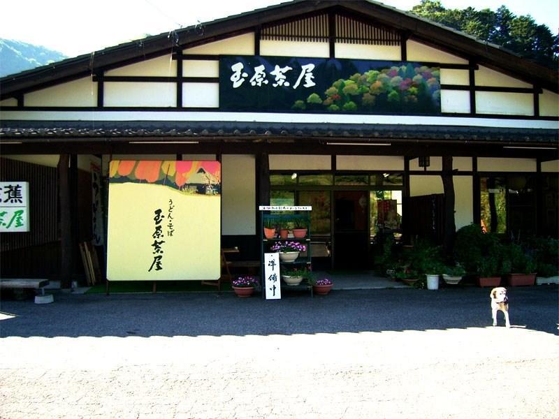 Kogen No Yado Mizubasho