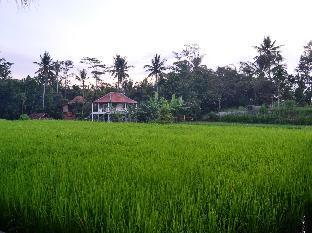 The Sowan Ubud