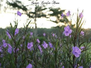 Sweet Garden Home Resort 5