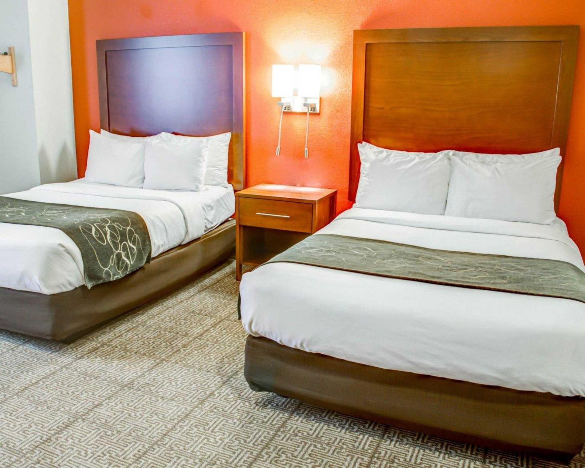 Comfort Suites Tyler South 3