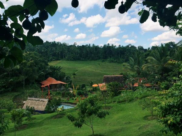 Bali Lush Guest House Bali