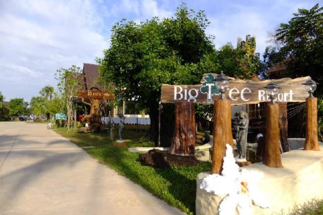 ไม้ใหญ่ รีสอร์ต – Maiyai Resort – Big Tree