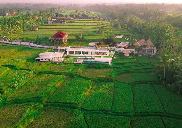 Luxury Villa Surrounded by Rice field in Ubud