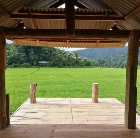 Chinopuu Hut Homestay Muangkong Chiang Dao