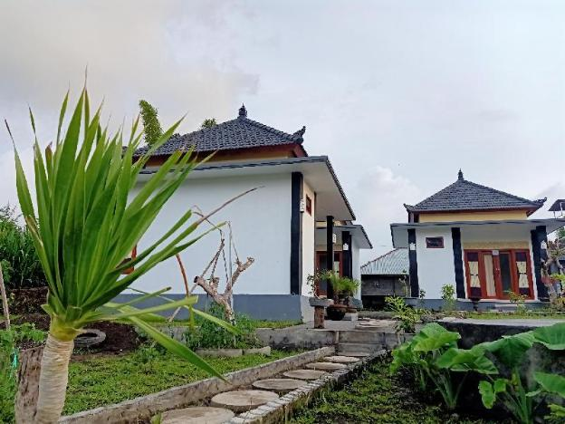 Volcano Dody Guest House