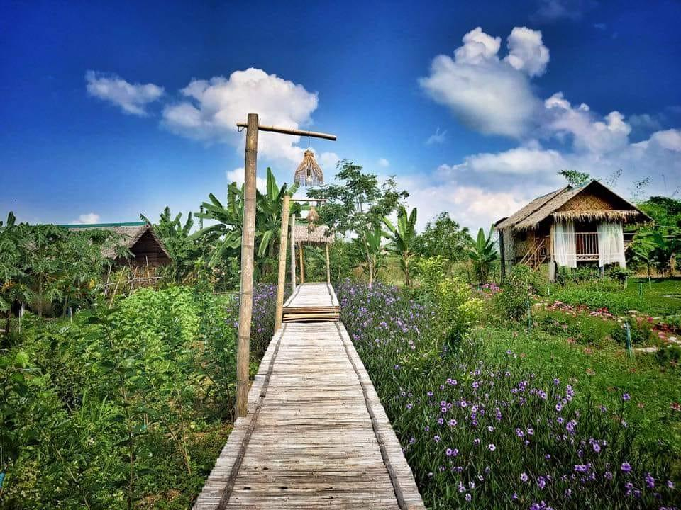 Baan Rai Chy Tung by P&Y Bungalow 2 สตูดิโอ บังกะโล 1 ห้องน้ำส่วนตัว ขนาด 27 ตร.ม. – ไทรโยค