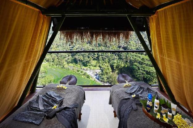 Deluxe Suite Located in the Middle of the Jungle
