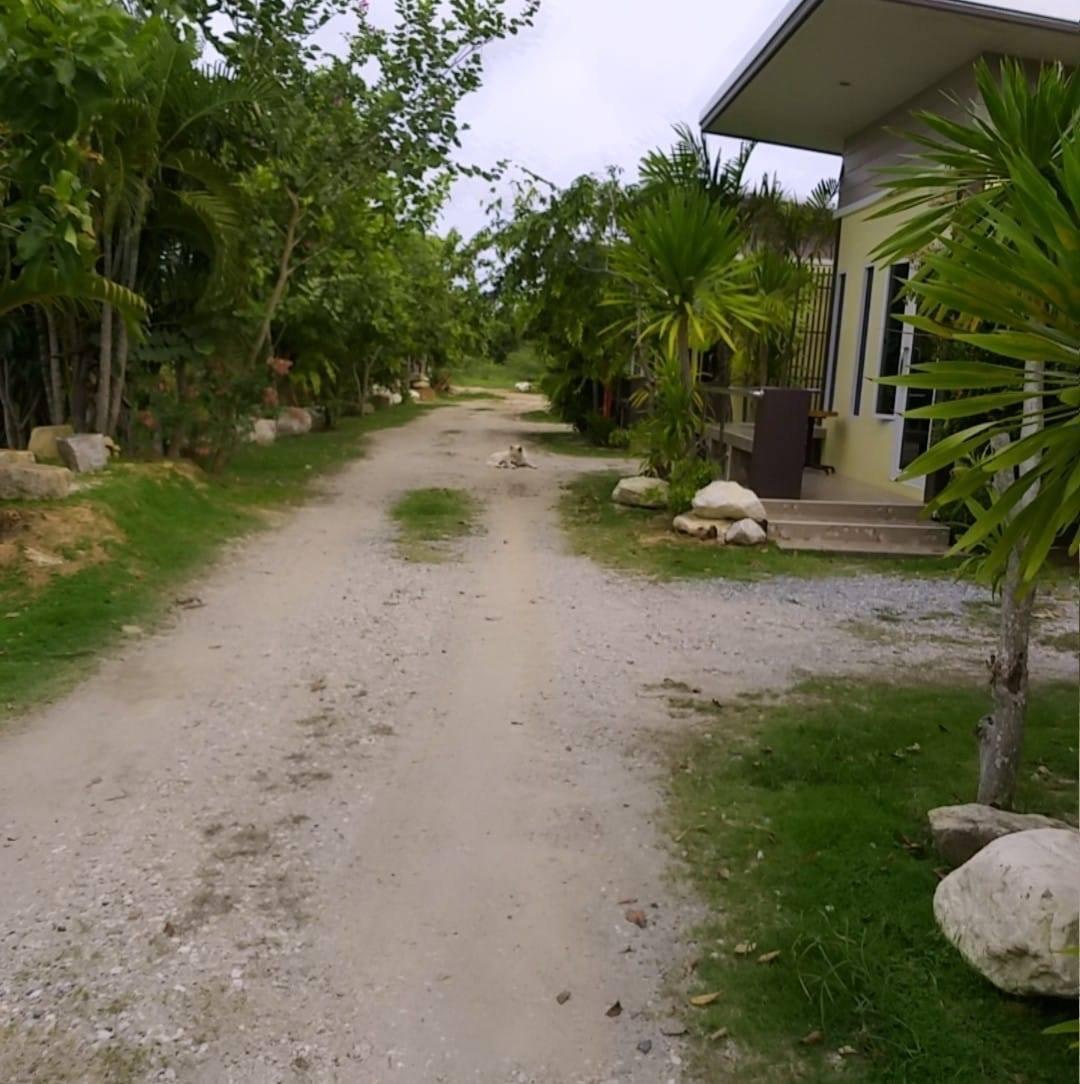 M สตูดิโอ บ้านเดี่ยว 1 ห้องน้ำส่วนตัว ขนาด 4 ตร.ม. – หาดระยอง