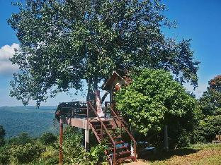 [ロムカオ]一軒家(12m2)| 1ベッドルーム/1バスルーム Phongtang Garden Homestay