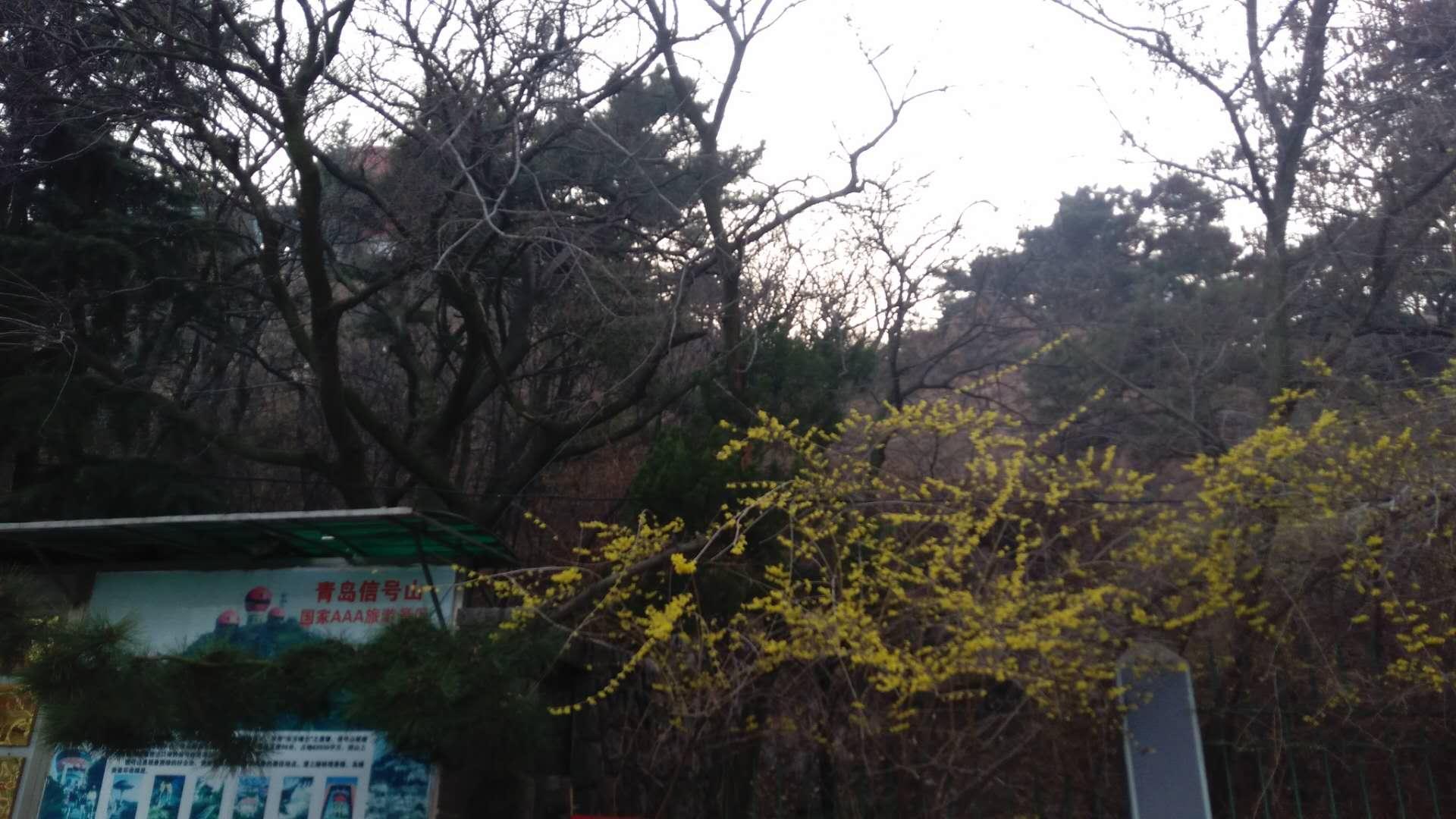 Serenity Cottage Near By Qingdao Zhan Qiao Pier