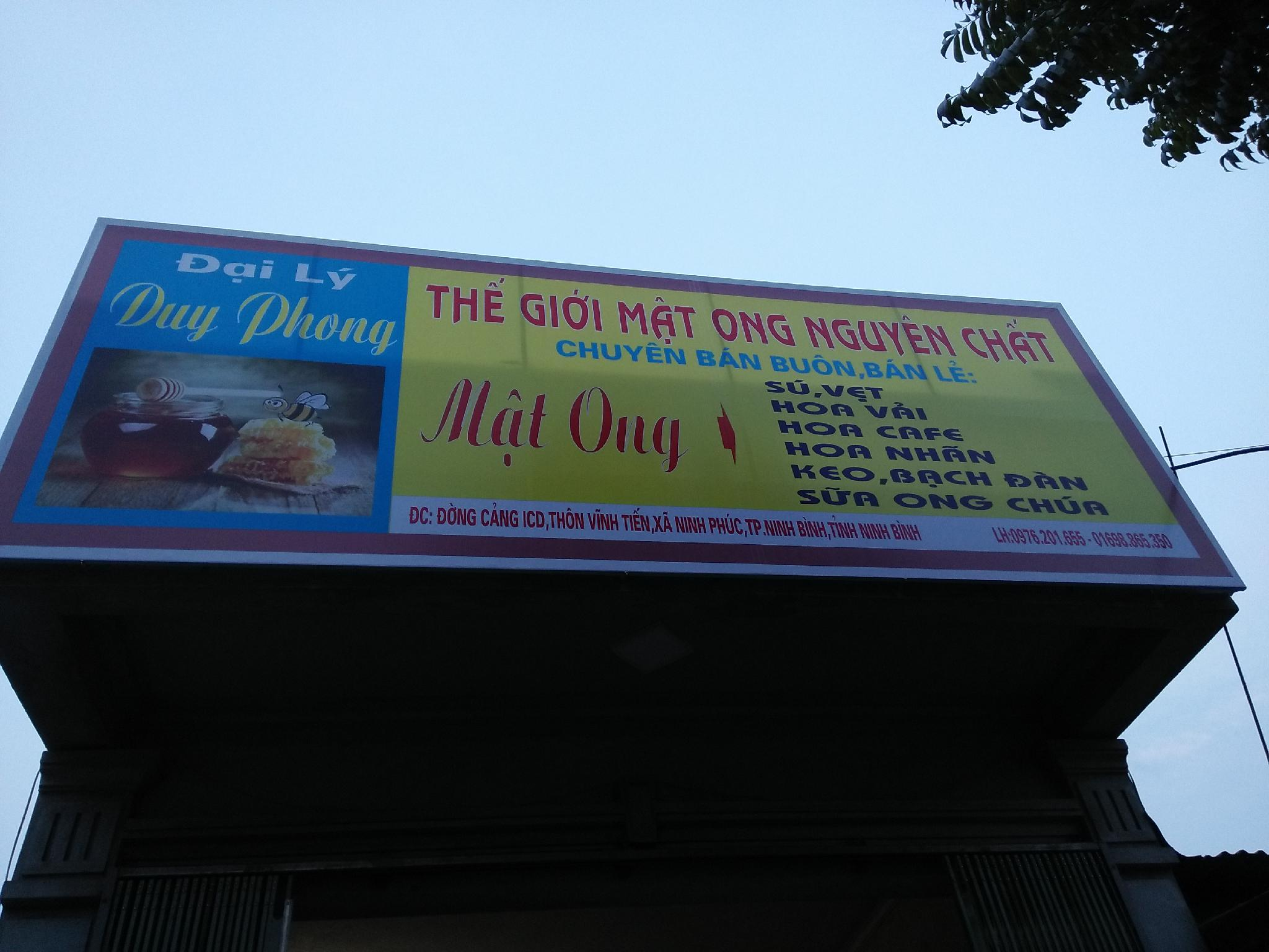 Mat Ong Nguyen Chat Duy Phong
