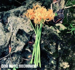 May Linh Homestay Ban Gioc Waterfall Cao Bang