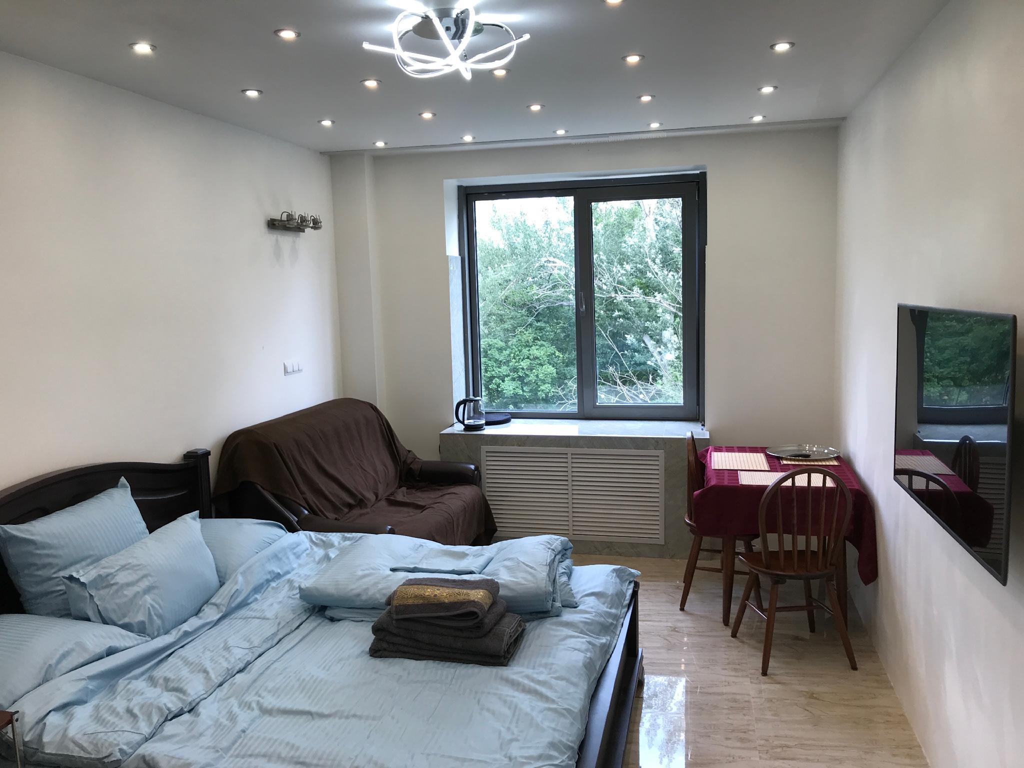 Apartment In Downtown St. Petersburg W Park View