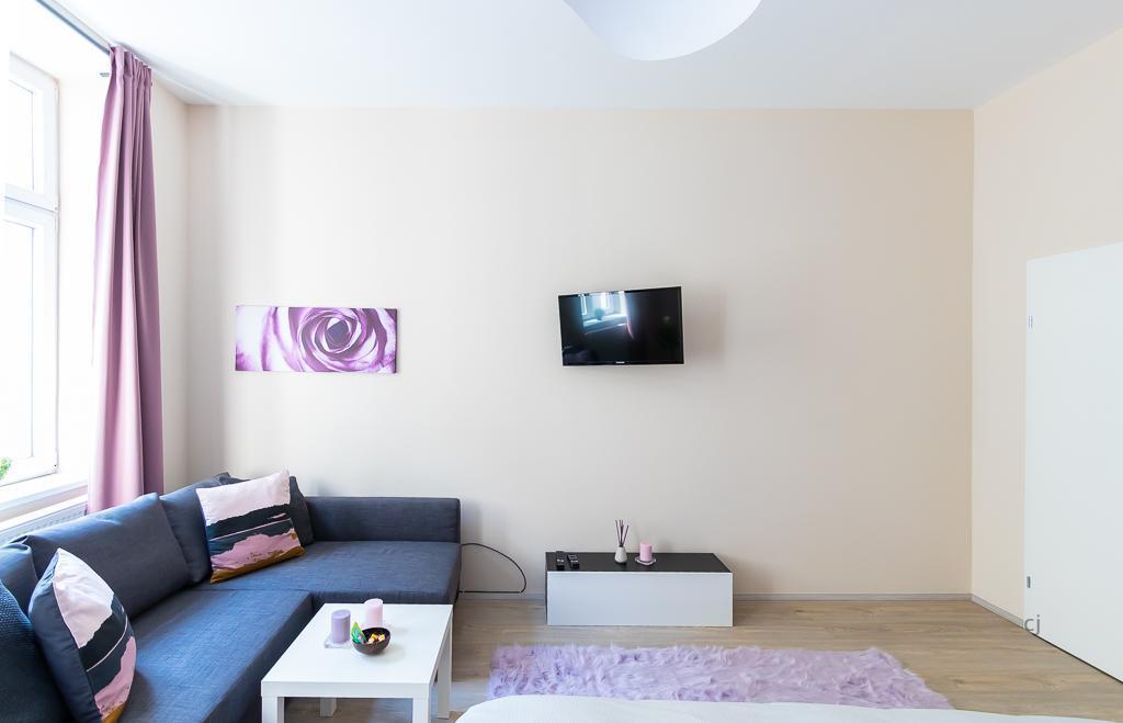 Winning Apartment By Steiner Rentals