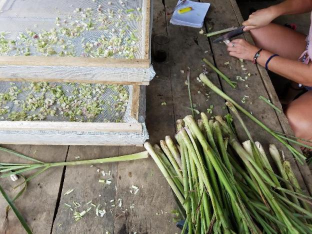 Alango Farmstay