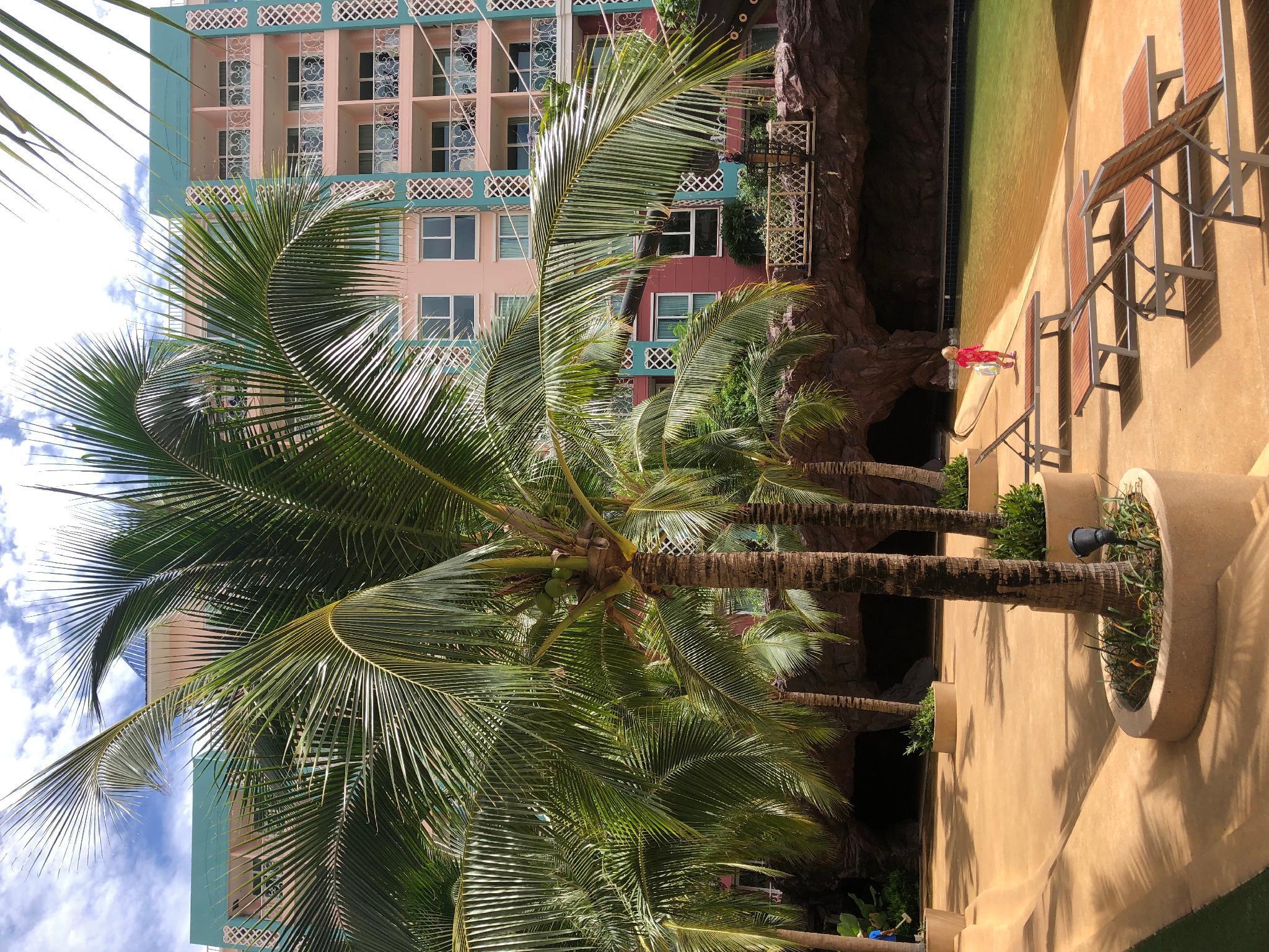 Grande Caribbean Water Park Beach Resort
