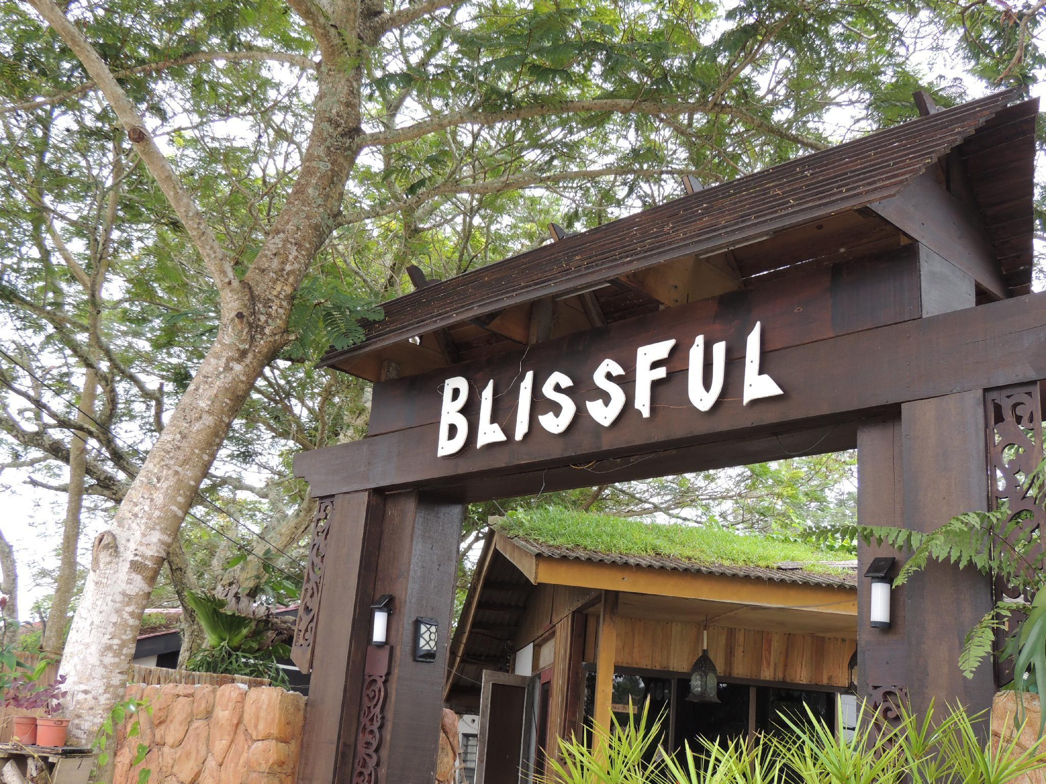 Box Of Blissful